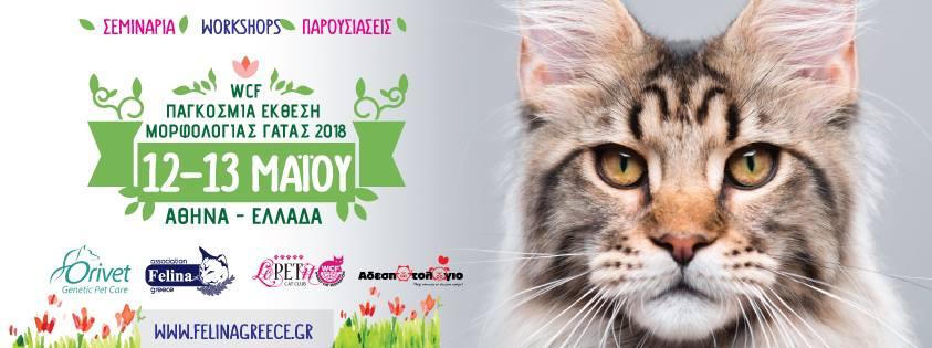 35cfcd95ff35 Παγκόσμια έκθεση Γάτας - Athens wcf world show